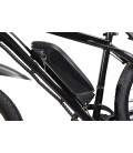 E-Bike Trekking, Lithium-Akku